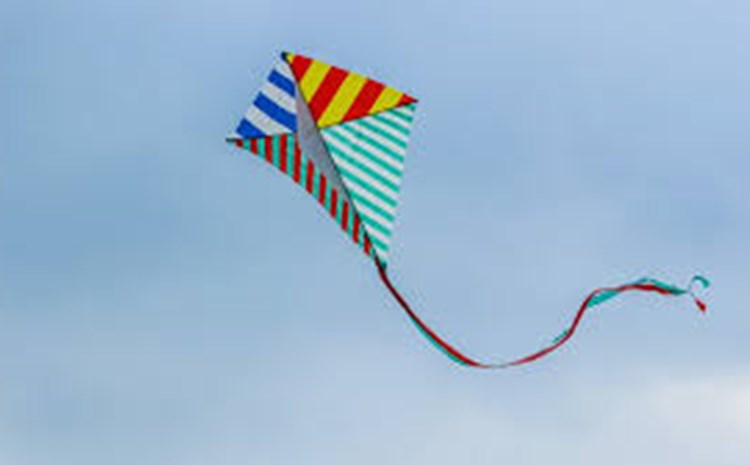 Kite Day! - article thumnail image